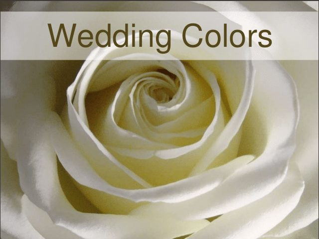 Wedding Color Ideas and Tips